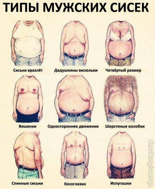 Виды женской груди 3 фотография