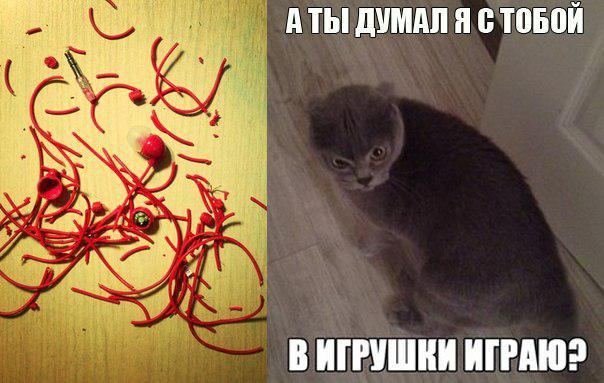 http://bashny.net/uploads/images/00/00/01/2013/12/27/84e0a67659.jpg