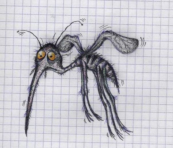 Эффективные способы борьбы с комарами