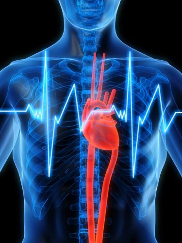 Como radiación electromagnética afecta al cuerpo humano. Página 1