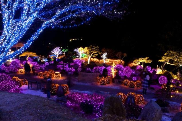 Millions Of Lights On The Christmas Festival 6 Photos