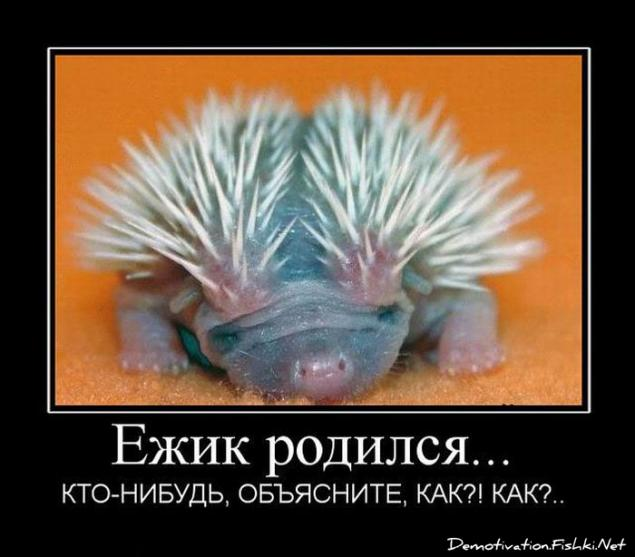 http://bashny.net/uploads/images/00/00/13/2013/05/04/b00a559615.jpg