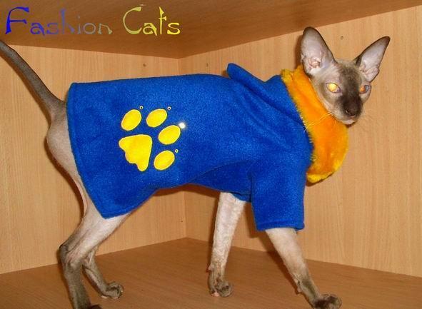 Мастер класс по одежде для кошек