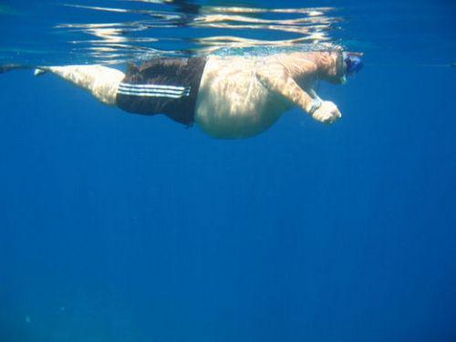 толстая девка прыгает в бассейн видео