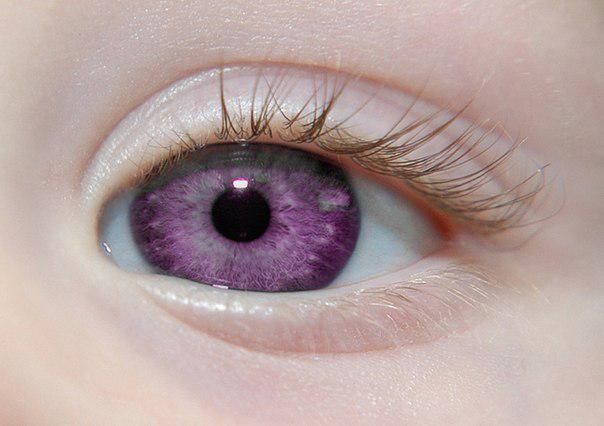 most rare eye color in the world images galleries with a bite. Black Bedroom Furniture Sets. Home Design Ideas