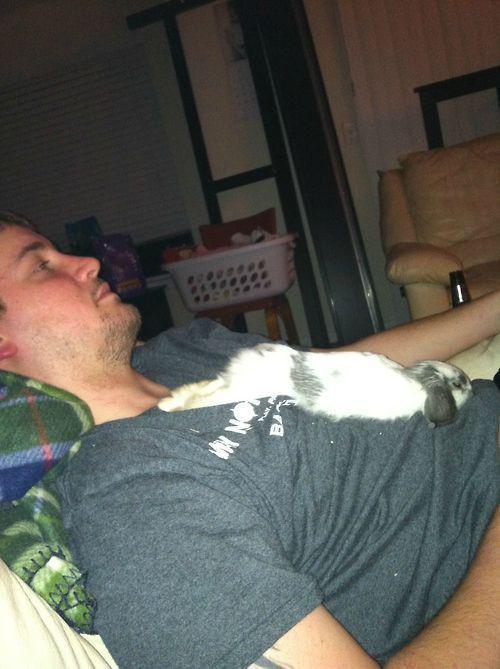 Спящие фото 24