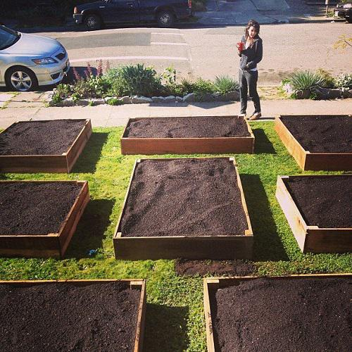 Vegetable Gardening 101 How To Plant And Grow A Beautiful