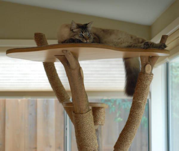 Своими руками поделки из дерева для кошек 19