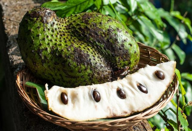 The shocking discovery scientists: found a miracle fruit that can