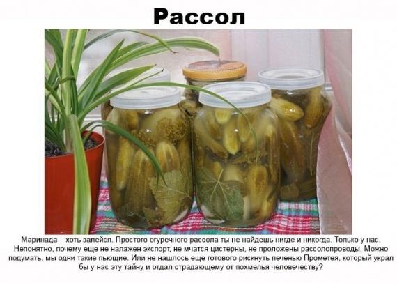 Засолка огурцов рецепты фото