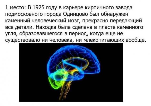 http://bashny.net/uploads/images/00/00/35/2013/04/28/7ad6e5b92e.jpg