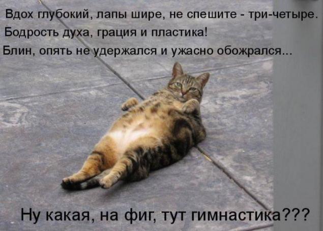 http://bashny.net/uploads/images/00/00/35/2013/05/09/b5f93cc1e2.jpg