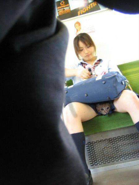 красивая попа в джинсах китаянки фото