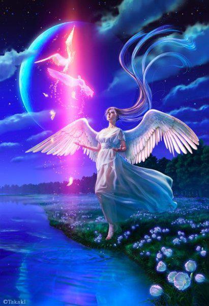 Image result for پرواز فرشته ها به آسمانها