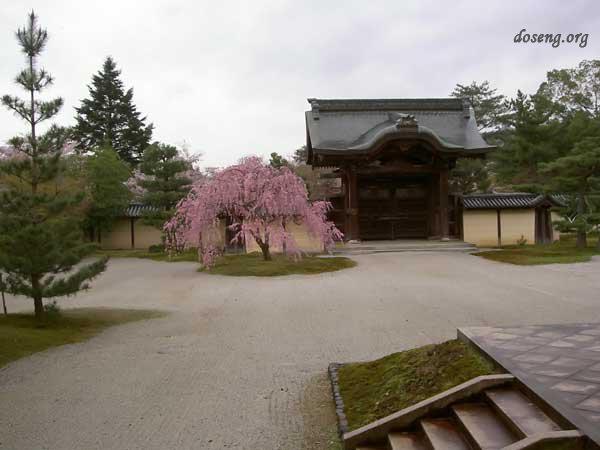Jard n japon s 48 fotos p gina 1 for Jardin japones cursos