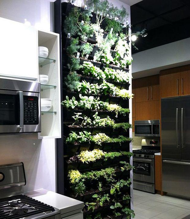 Sustainable Gardening Its All The Rage!  Planet Natural