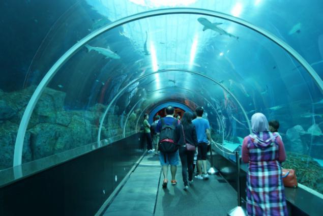 singapore aquarium page 1
