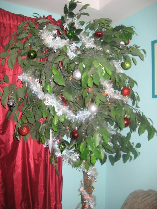 ... population professes Hinduism or Islam, but that a small part of that  is celebrating Christmas, dress up in this festival banana palms and mango  trees. - 10 Coolest Christmas Traditions. Page 2