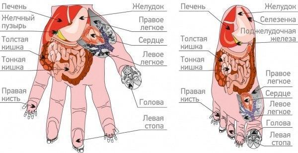 su-dzhok-terapiya-i-orgazm