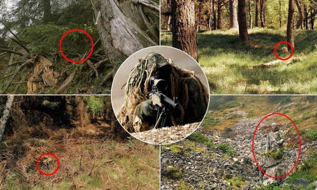 страницы посвящены найдите на фото снайпера ученые проводят