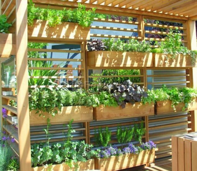 Вертикальный огород своими руками фото