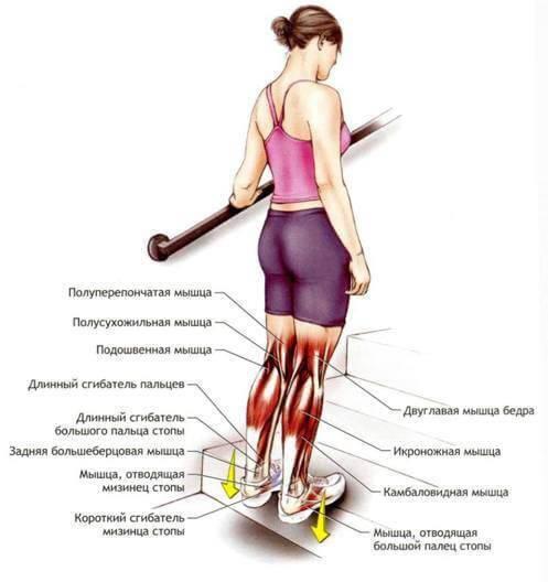 Болят колени как похудеть