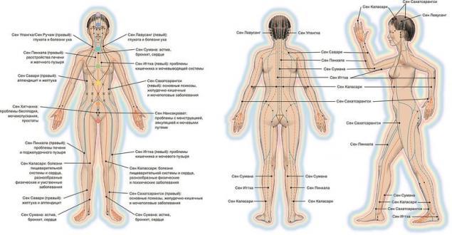 kanal københavn livepigen tantra massage helsingør