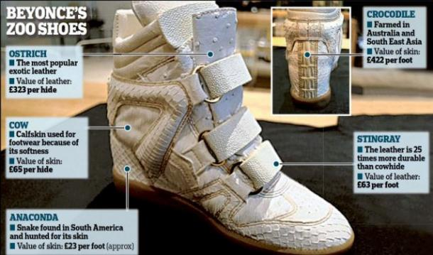 Buy shoes ostrich and get free shipping on AliExpresscom