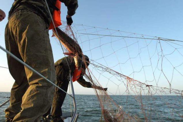контроль за рыбной ловлей