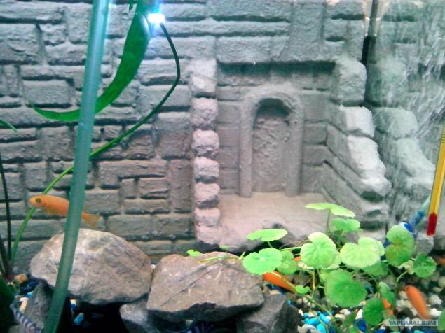Фон для аквариума из пенопласта своими руками видео