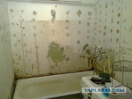 Дешевый ремонт в ванне своими руками