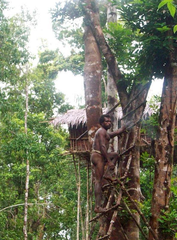 Tribe living on the trees: Korowai  Page 1