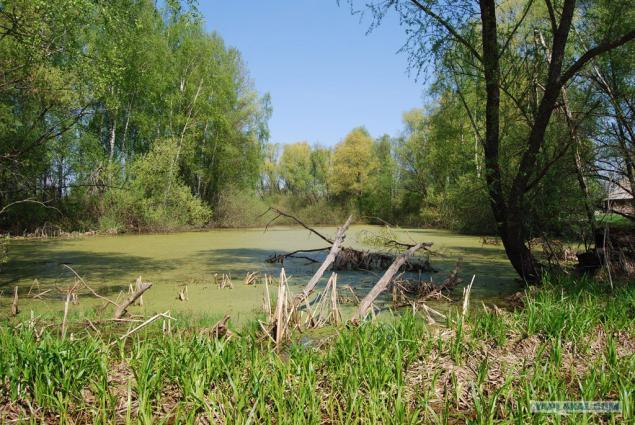 Год основания деревни успенка аромашевского района тюменской области