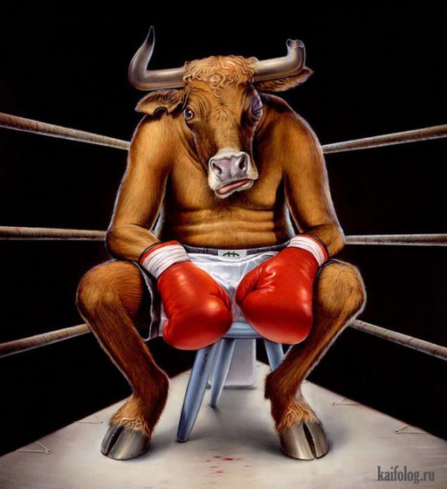 Картинка быка прикольная
