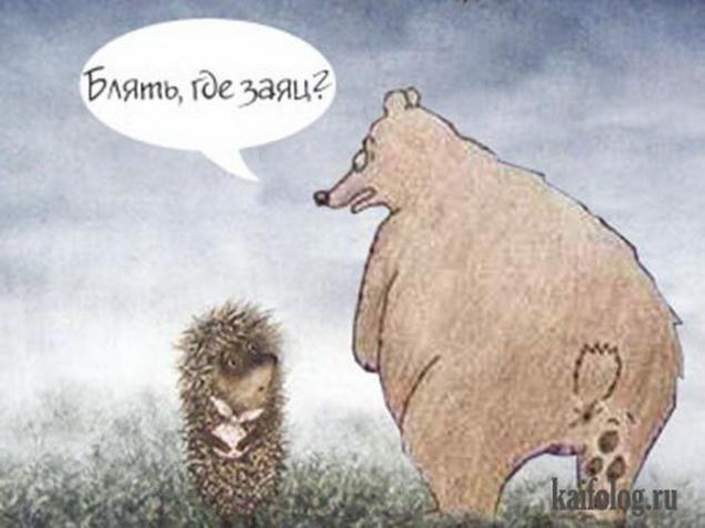 Кадровика открытка, картинки медведь и заяц приколы