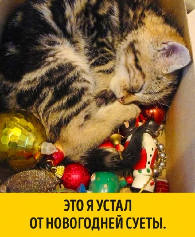Как украсить на новый год картинки